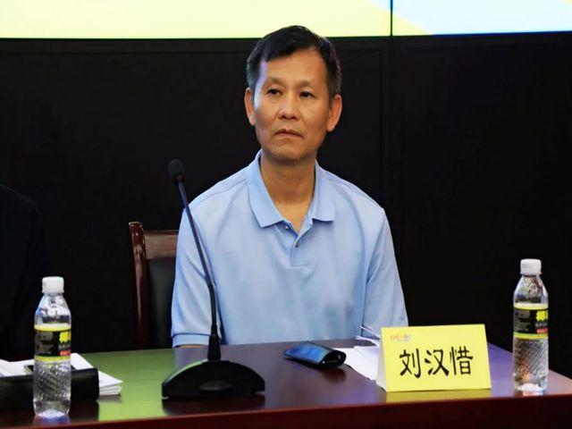 南国企业集团刘汉惜董事长