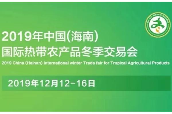 2019年海南冬交会南国食品冬交会馆被挤爆