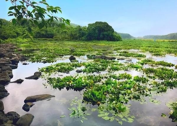 海南旅游景点-定安冷泉