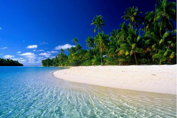 海南旅游特产