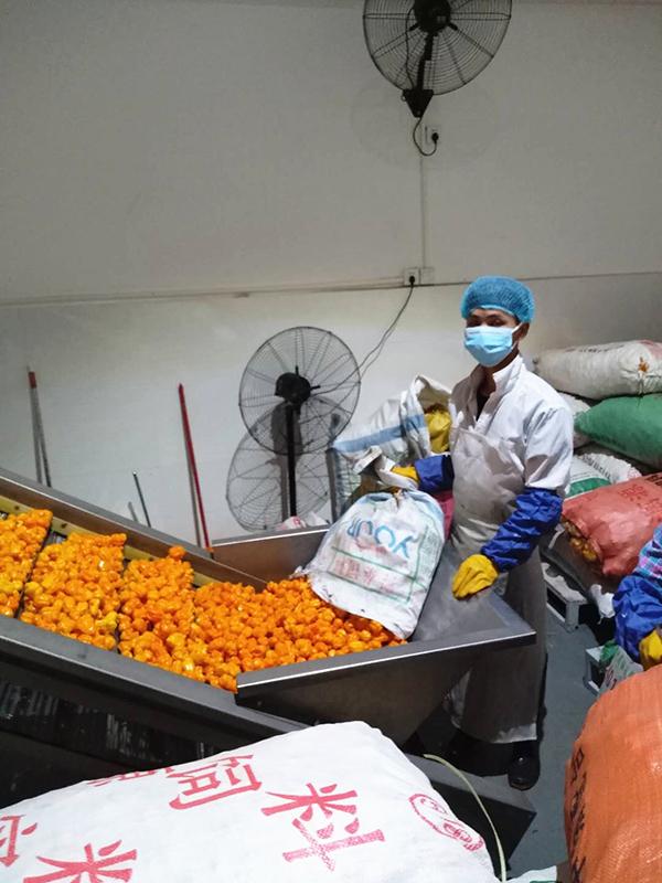 严格按疫情防控标准规范生产