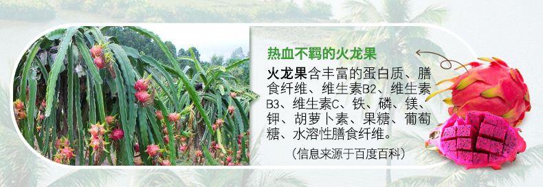 产品图-火龙奇异水果麦片-12