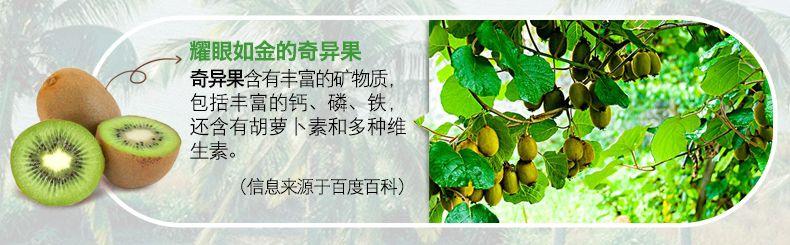 产品图-火龙奇异水果麦片-13
