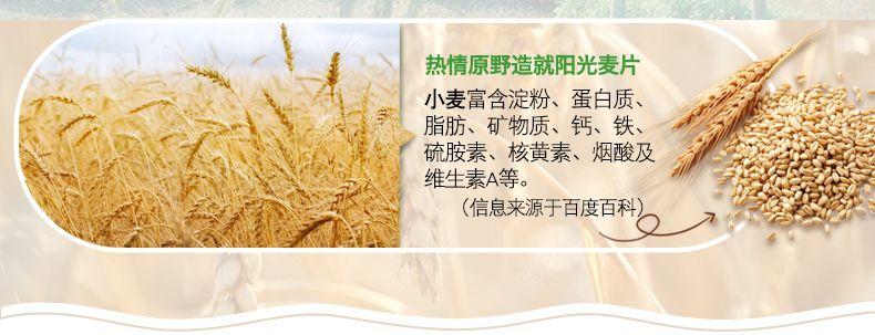 产品图-火龙奇异水果麦片-14
