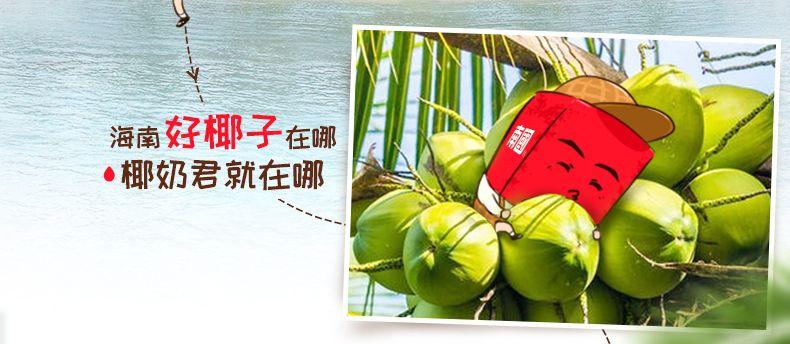 产品图-火龙奇异水果麦片-6