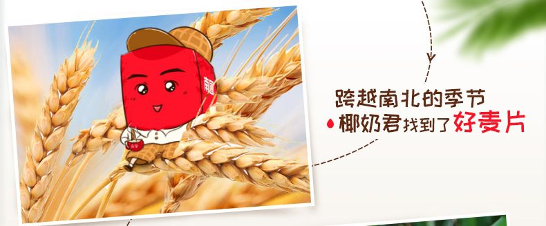 产品图-火龙奇异水果麦片-7