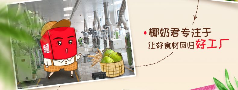 产品图-火龙奇异水果麦片-9