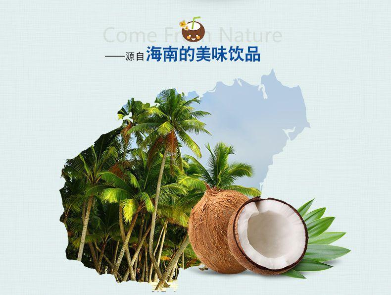浓香椰子粉-3