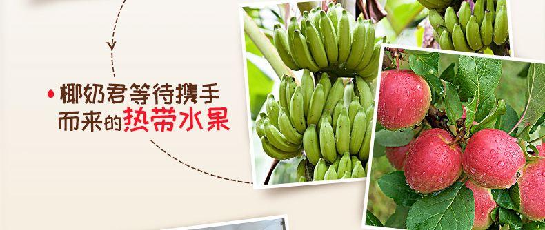 产品图-苹果香蕉燕麦片-8