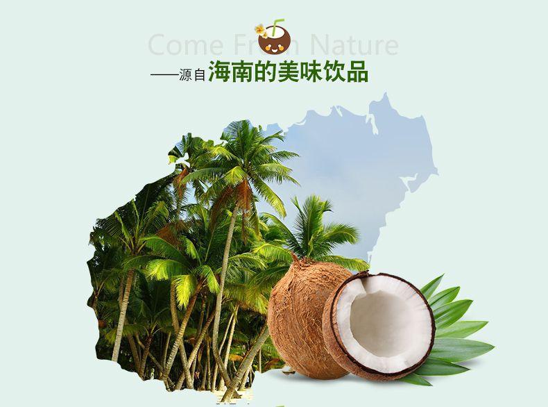 产品图-特浓椰子粉-3