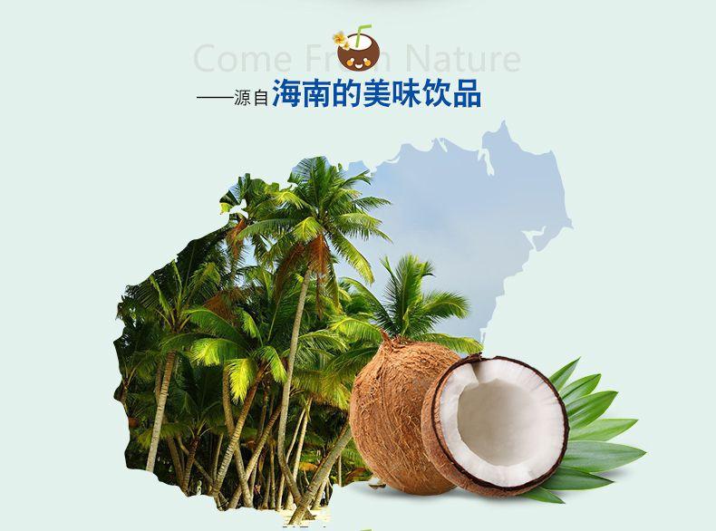 原浆椰子粉-3