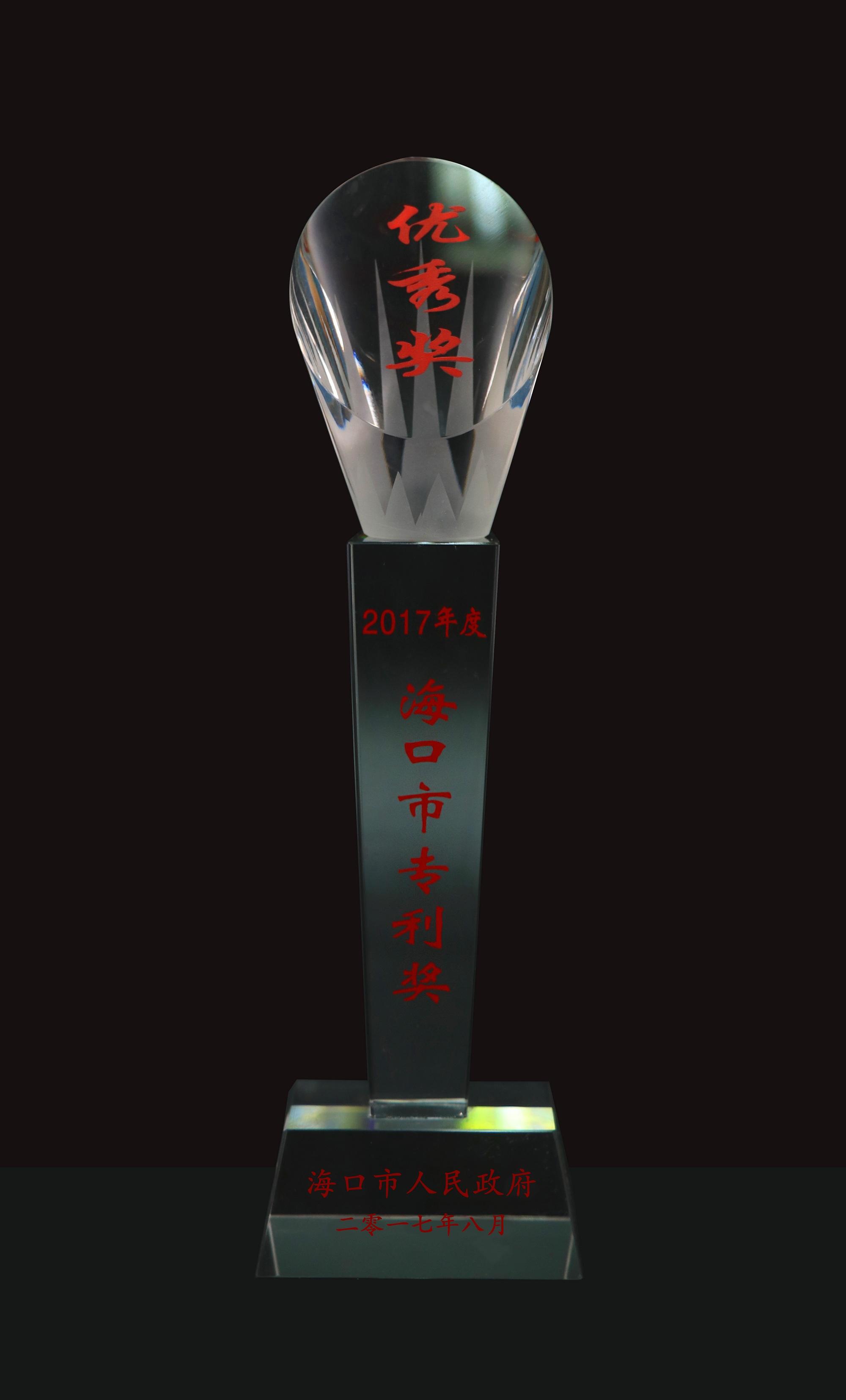 2017 年度海口市专利奖
