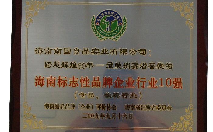 海南标志性品牌企业行业10强